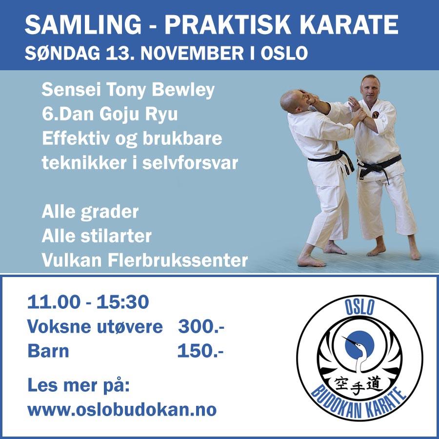 obk-kurs-karate